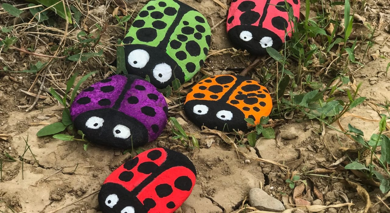 Rock Craft - Ladybird Pebbles - End Result Out in the Garden