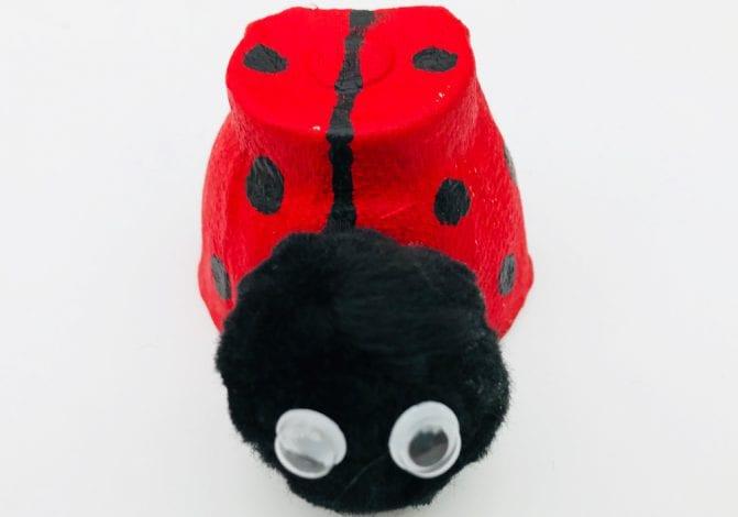 Kids Crafts Ladybird Egg Cups step 3 add ladybird faces
