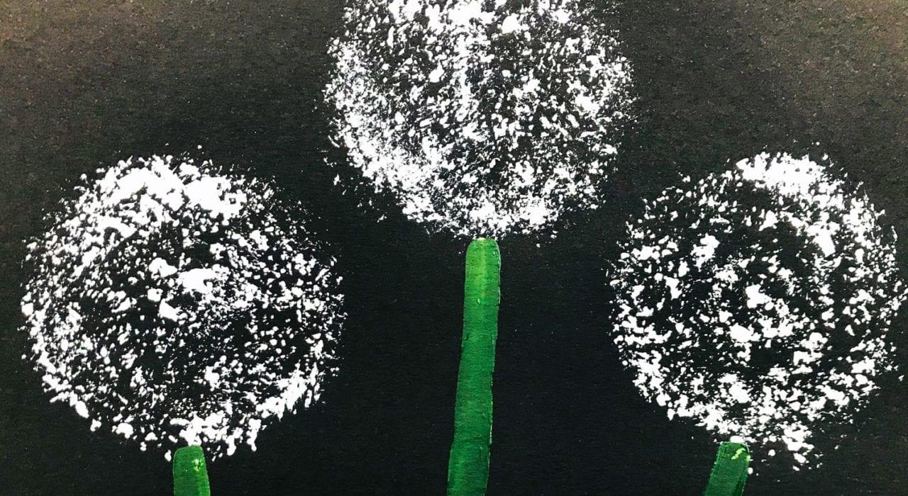 kids crafts dandelion prints white on black paper with green stalks