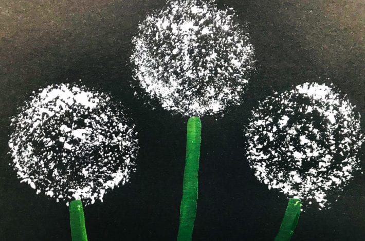 kids crafts dandelion prints white on black paper with green stalks
