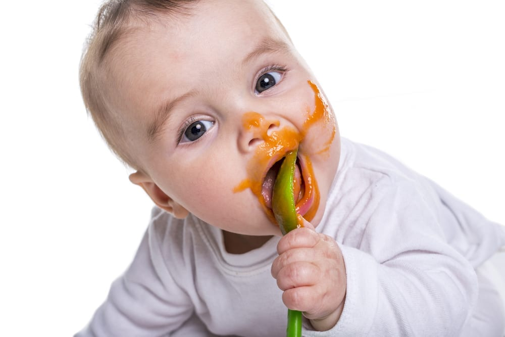 baby led weaning - purees - first foods - wean baby