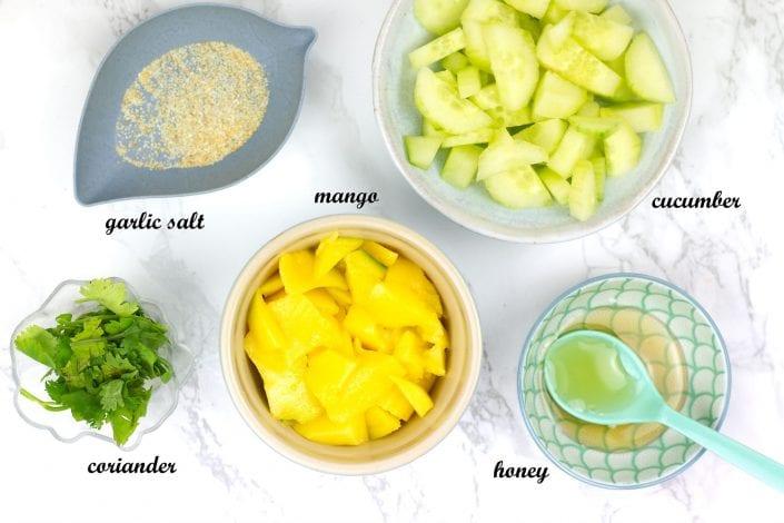 gluten free kids meals - kids dips - mango salsa